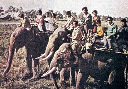 Туристы в Индии