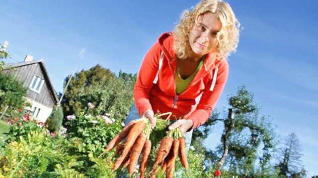 Огородные секреты