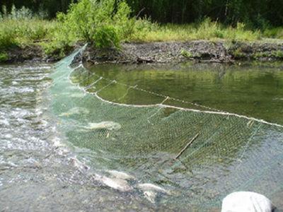 рыбацкие сети